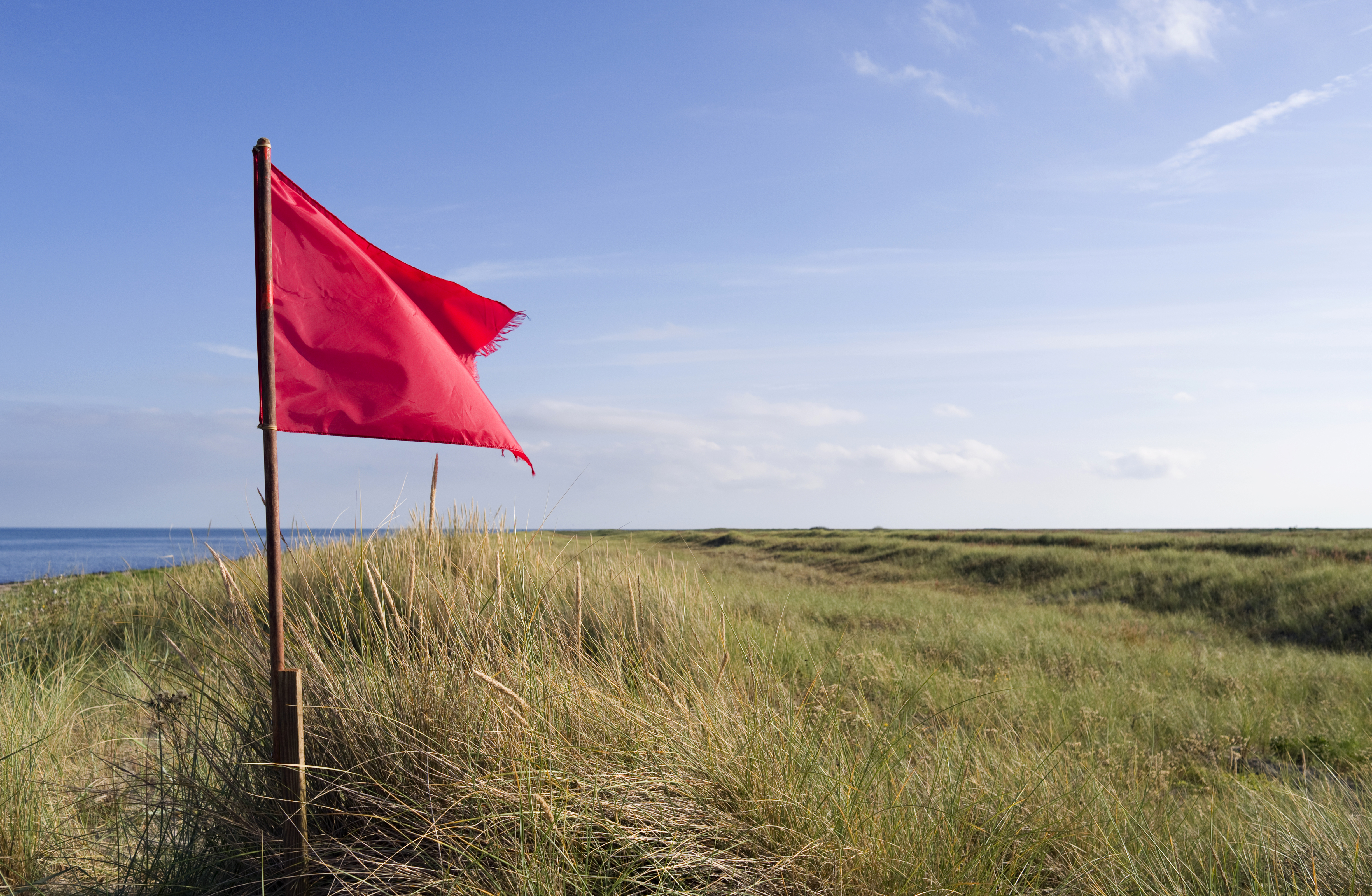 Using Online Proctoring? 4 Red Flags You Shouldn't Ignore